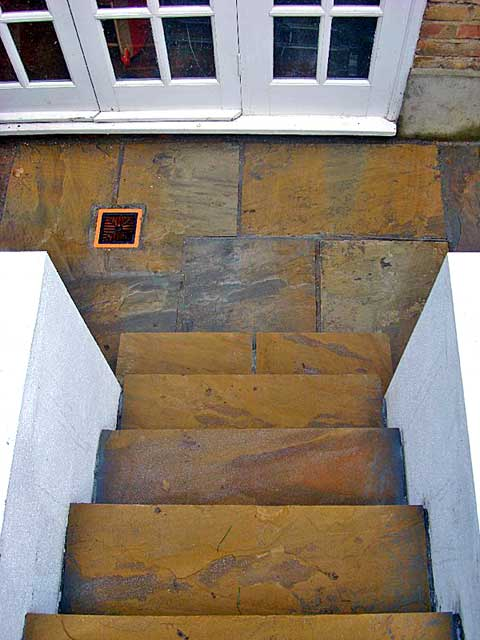 Yorkstone steps from above